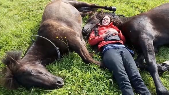 rapariga-deita-se-com-os-seus-cavalos-e-tem-uma-excelente-experiencia